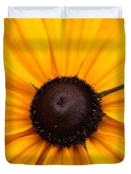 Goldilocks Gloriosa Daisy 2 Duvet Cover by Jouko Lehto