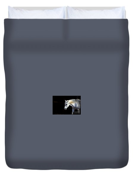 In Memory Of Mi Amigo Duvet Cover