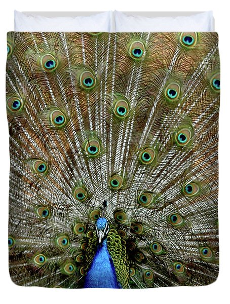 Duvet Cover featuring the photograph  Iridescent Blue-green Plumage by LeeAnn McLaneGoetz McLaneGoetzStudioLLCcom