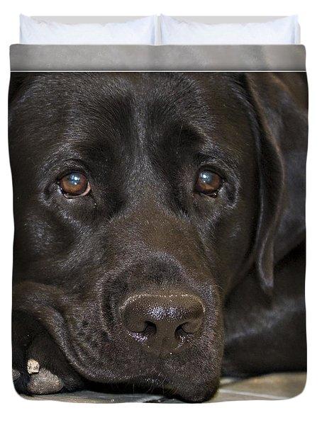 Labrador Retriever A1a Duvet Cover