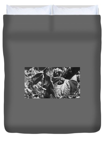 Duvet Cover featuring the photograph  Love-bugs - No. 2016 by Joe Finney