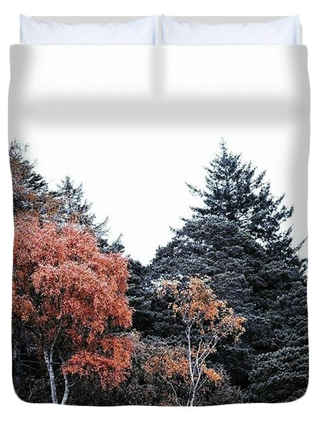 • Wild Things •  Late Night Duvet Cover by Dan Cook