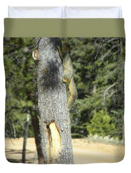 Squirrel Home Divide Co Duvet Cover