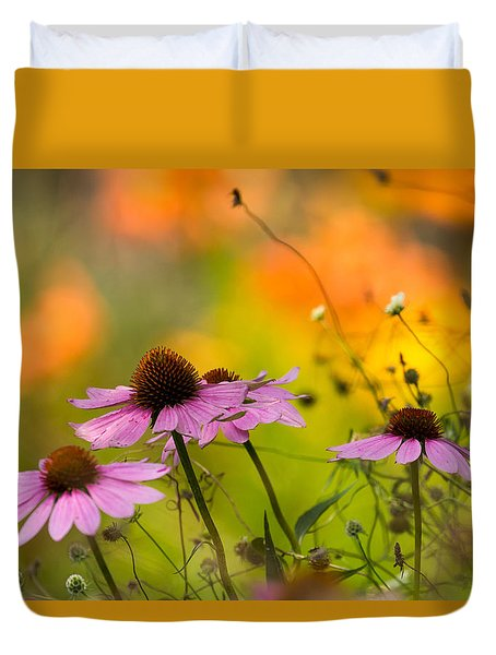 Coneflower Symphony Duvet Cover by Mary Amerman