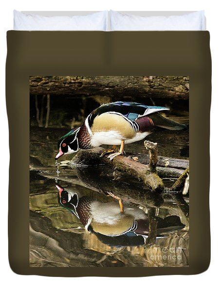 A Sip For You And Me Wildlife Art By Kaylyn Franks Duvet Cover