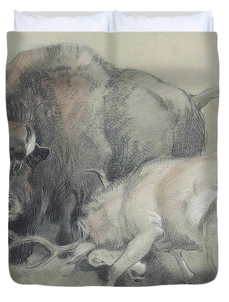 A Stag Challenging A Bison Duvet Cover