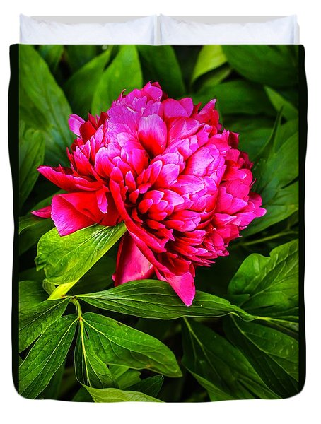 Abstract Flower Duvet Cover by David Warrington