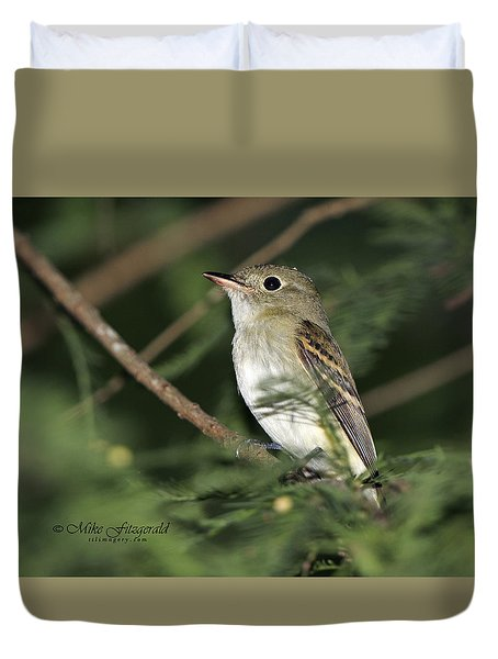 Acadian Flycatcher Duvet Cover