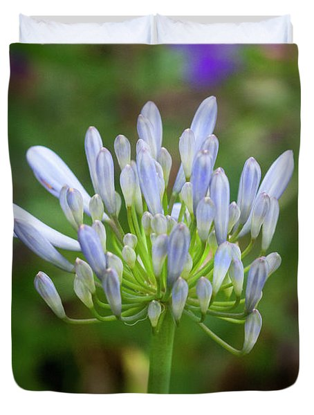 Agapanthus Lily Of The Nile Duvet Cover