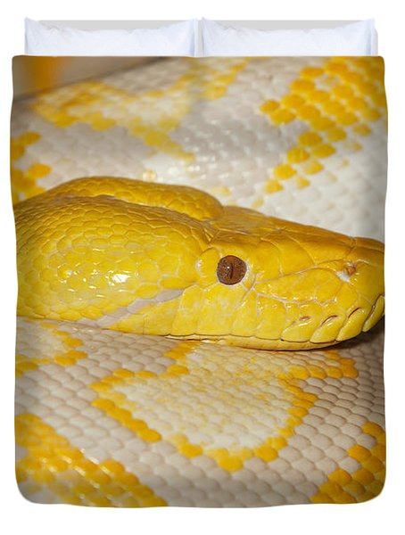 Albino Reticulated Python Duvet Cover by Gerard Lacz