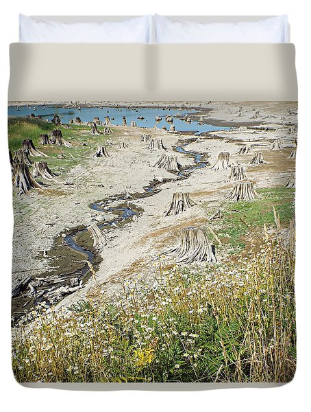 Alder Lake Stumps Duvet Cover by Joseph Hendrix