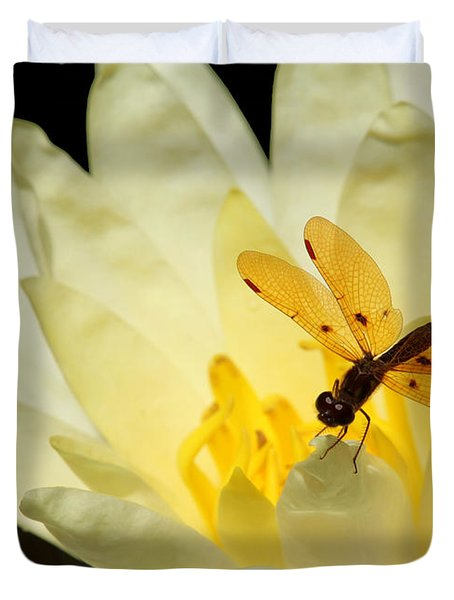 Amber Dragonfly Dancer 2 Duvet Cover