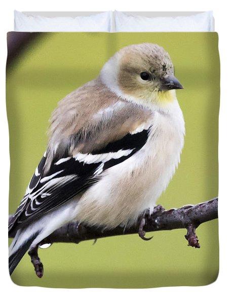 American Goldfinch Duvet Cover