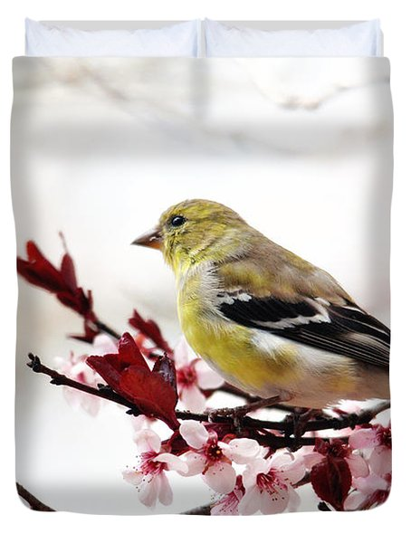 American Goldfinch In Spring Duvet Cover