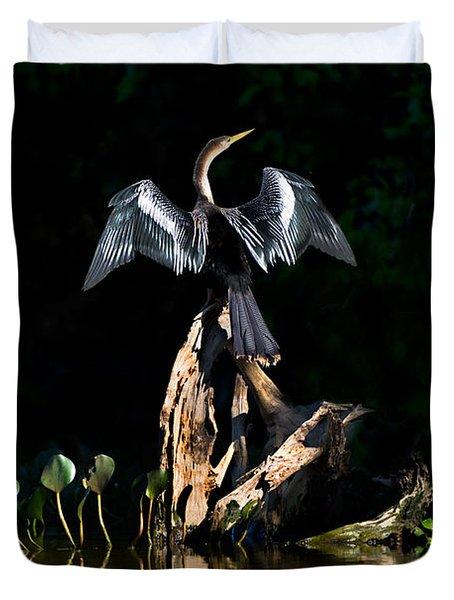 Anhinga Anhinga Anhinga, Pantanal Duvet Cover by Panoramic Images