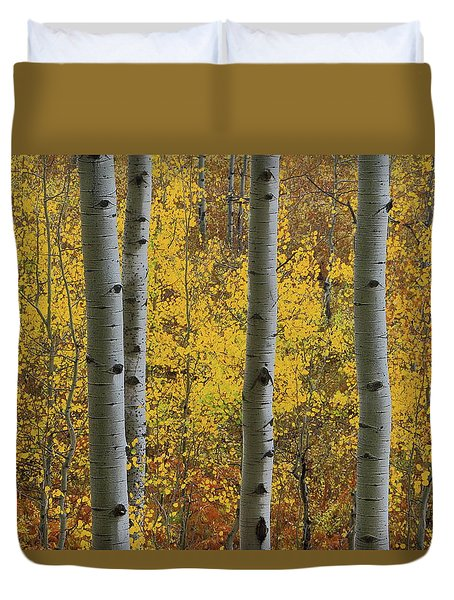 Aspen In Autumn At Mcclure Pass Duvet Cover by Jetson Nguyen
