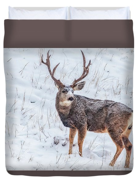 Atypical Buck Duvet Cover