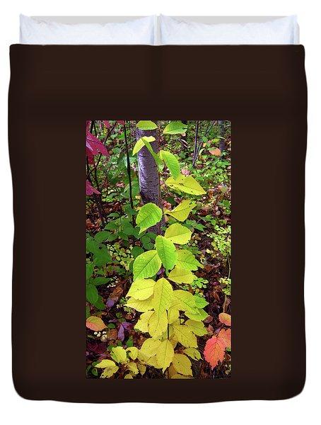 Autumn Leaves II Duvet Cover