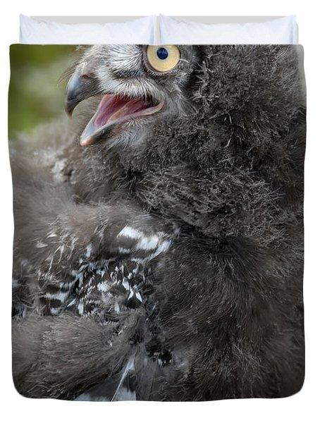 Baby Snowy Owl Duvet Cover