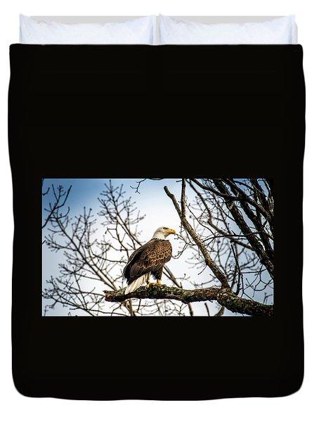 Bald Eagle Majesty Duvet Cover