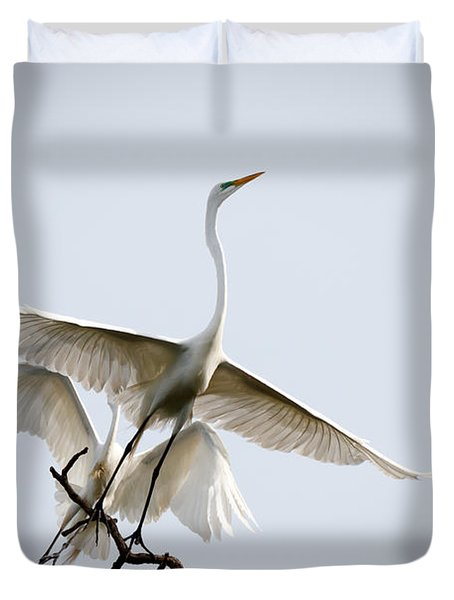 Ballet In The Sky Duvet Cover