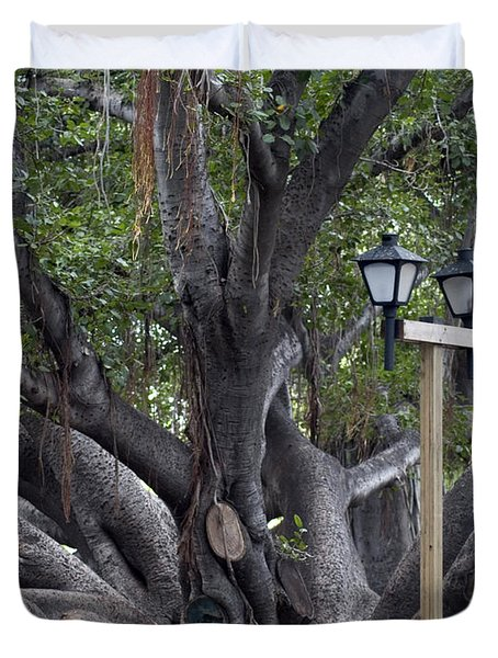 Banyan Tree, Maui Duvet Cover