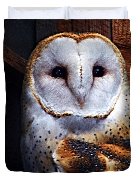 Barn Owl  Duvet Cover