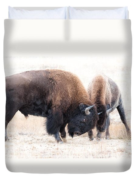 Duvet Cover featuring the photograph Battle Of The Bison In Rut by Yeates Photography