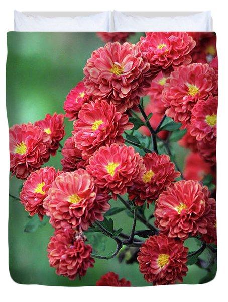 Beautiful Red Mums Duvet Cover