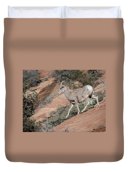 Big Horn Sheep Duvet Cover