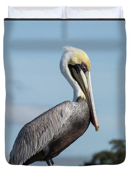 Biloxi Pelican Duvet Cover