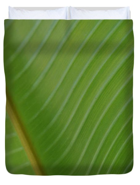 Birds Of Paradise Duvet Cover by Kelly Wade