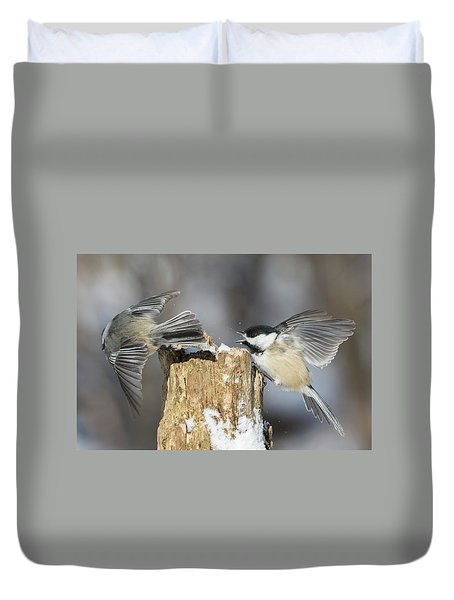 Duvet Cover featuring the photograph Black-capped Chickadee In Winter by Mircea Costina Photography