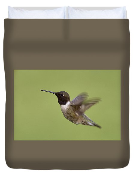 Black-chinned Hummingbird Duvet Cover by Doug Herr