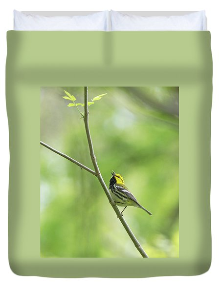 Black-throated Green Warbler Duvet Cover