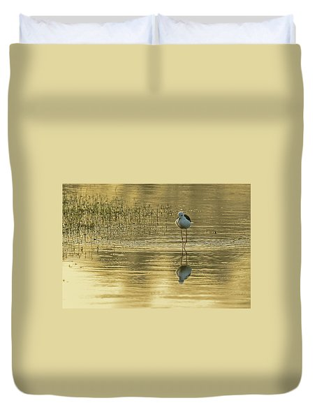 Black-winged Stilt Duvet Cover