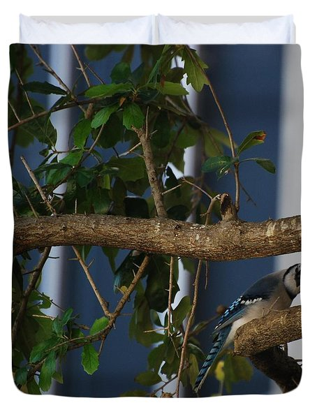 Duvet Cover featuring the photograph Blue Bird by Rob Hans