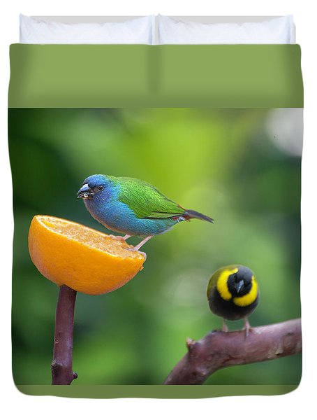Blue-faced Parrotfinch Duvet Cover