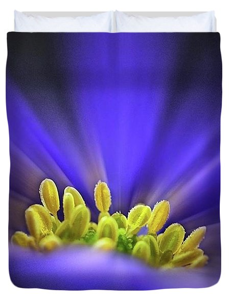 blue Shades - An Anemone Blanda Duvet Cover by John Edwards