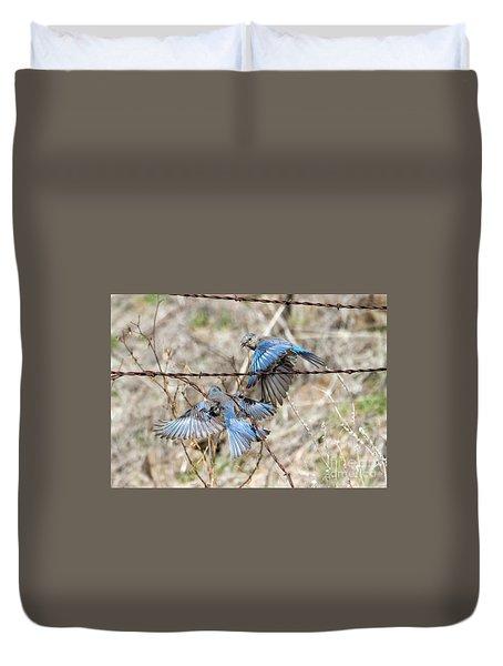 Bluebird Battle Duvet Cover by Mike Dawson