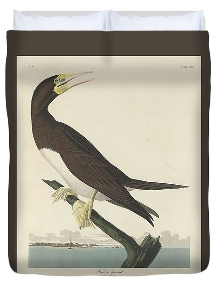Booby Gannet Duvet Cover by Dreyer Wildlife Print Collections