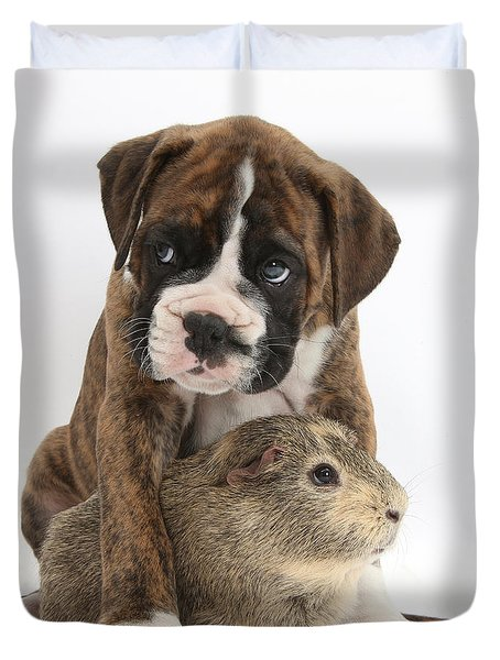 Boxer Puppy And Guinea Pig Duvet Cover by Mark Taylor