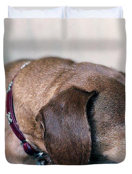 Brownie The Dachshund Duvet Cover