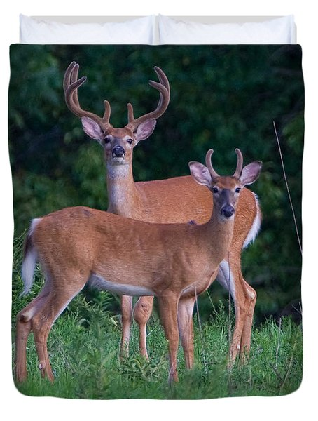 Buck Father And Son Duvet Cover