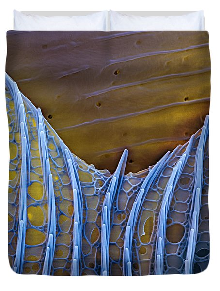 Butterfly Wing Scale Sem Duvet Cover by Eye of Science