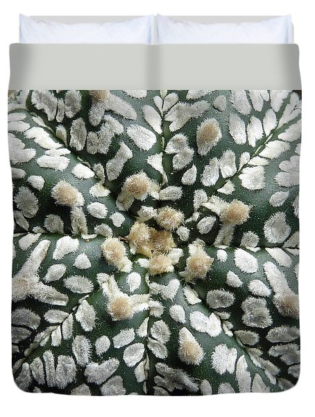 Cactus 1 Duvet Cover by Selena Boron