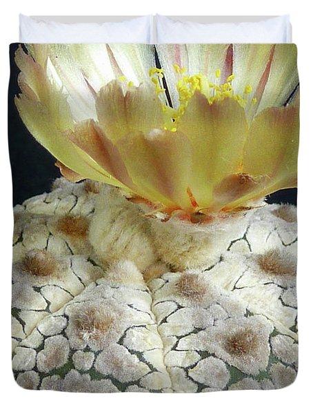 Cactus Flower 1 Duvet Cover