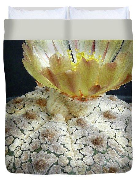 Cactus Flower 1 Duvet Cover by Selena Boron