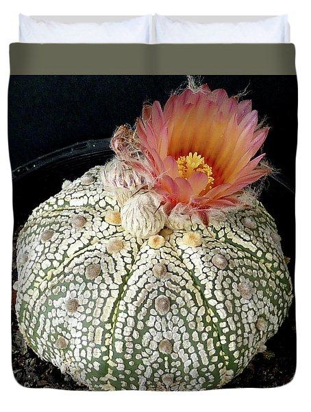 Cactus Flower 4 Duvet Cover by Selena Boron