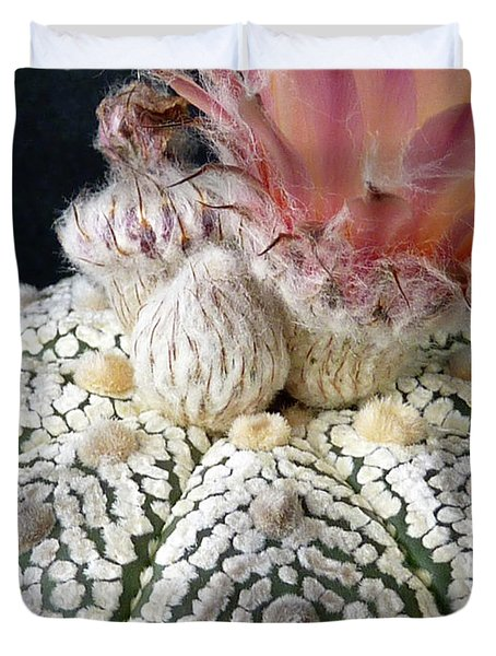 Cactus Flower 6 Duvet Cover